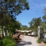 camping-st-florent-allee++